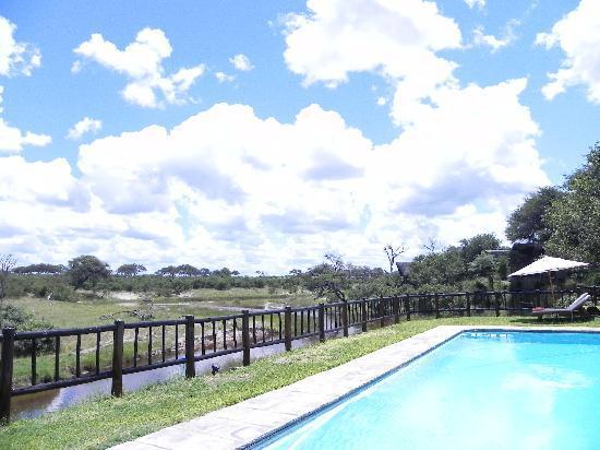 Belmond Savute Elephant Lodge: The pool & the river