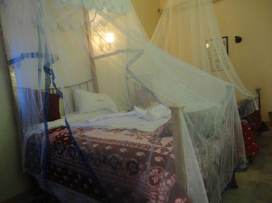 Villa Nile House : chambre 101