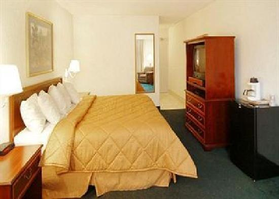 Comfort Inn Arlington Boulevard: Spacious & Comfortable Guest Rooms