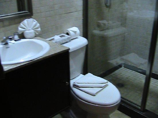 Hotel Casa Continental: bagno