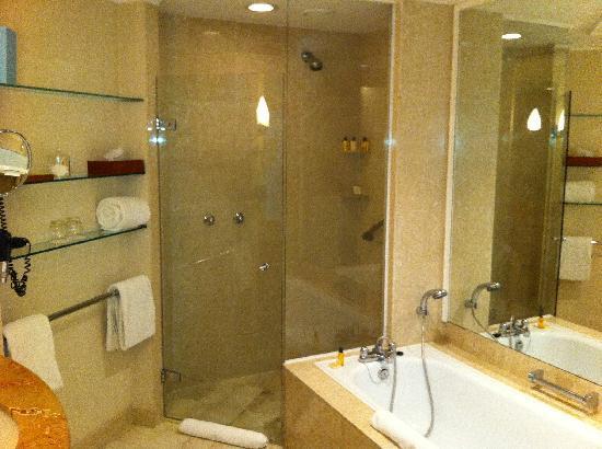 Hyatt Regency Belgrade: Bathroom