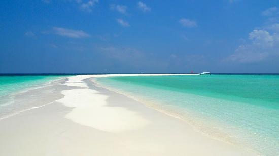 Four Seasons Resort Maldives at Kuda Huraa: Private Sandbar