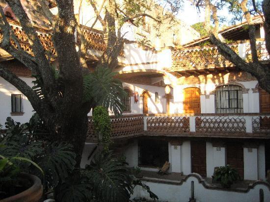 Hotel Los Arcos: jacaranda tree in courtyard