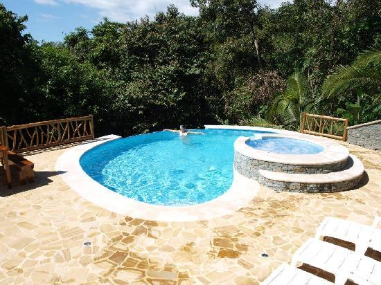 Villa Kristina Apartments : Pool umgeben vom Dschungel - man könnte den ganzen Tag dort verbringen...