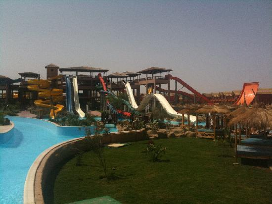 Jungle Aqua Park: Slides