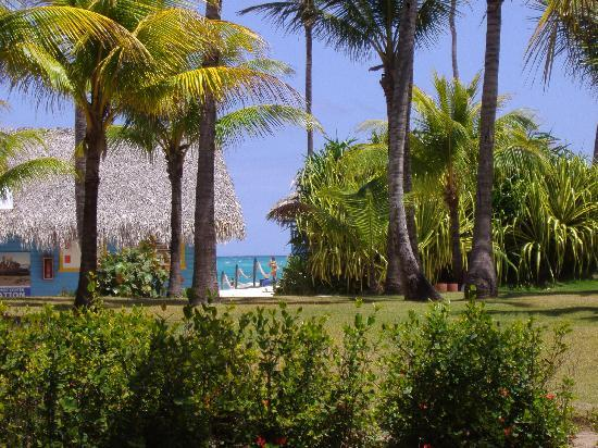Bavaro Princess All Suites Resort, Spa & Casino: view from our rooms' patio
