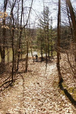Hocking Hills Frontier Log Cabins: Nice walk to the pond