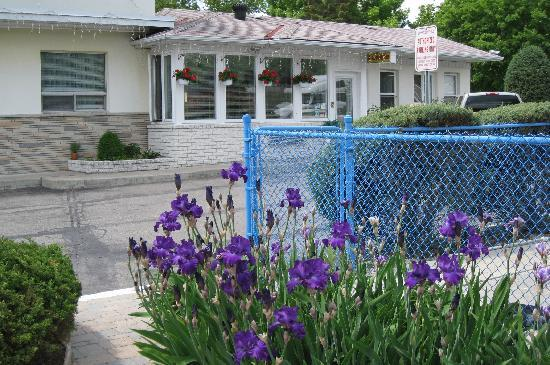 Grand Motel Toronto : Office Exterior