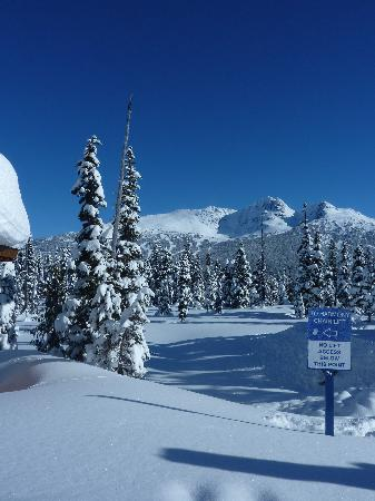 Carleton Lodge: Bluebird Day on Whistler Mountain