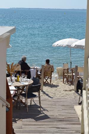 Hotel Eden : beach front restaurant