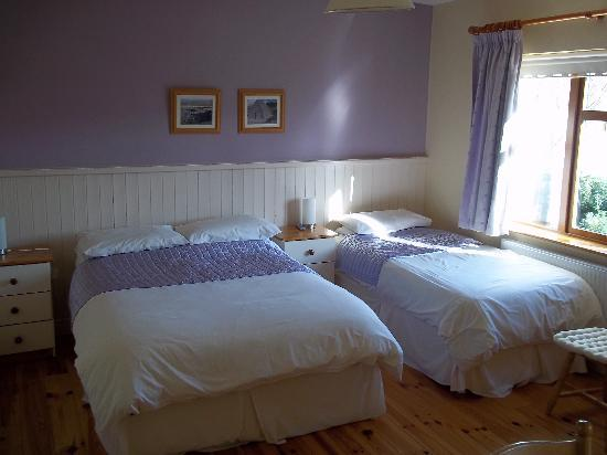 Ard Na Coille Bed and Breakfast: One of our light and spacious rooms