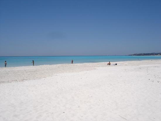 Hotel Ellymar: Spiaggia Vada