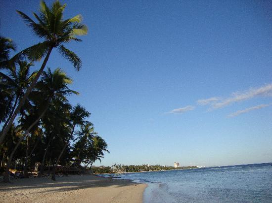 Playa Esmeralda Beach Resort: Vista dalla spiaggia