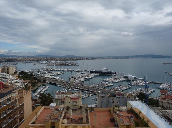 Hotel Amic Horizonte: Vistas desde la terraza de mi habitación