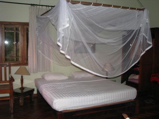 Room Villa Rosa