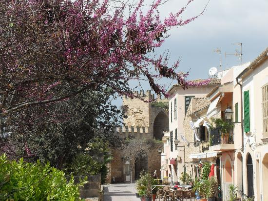 Hotel Roc Boccaccio : Altstadt Alcudia