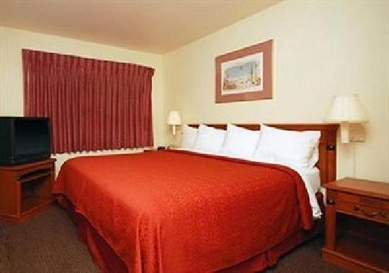 Quality Inn & Suites Mesa: One Bedroom Suite with Kind Bed