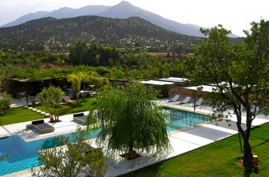 Domaine Malika: piscine et jardin