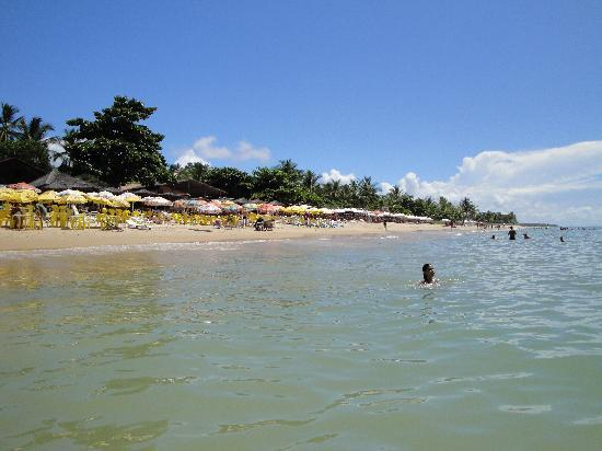 Pousada Coqueiros: Praia do Mucugé