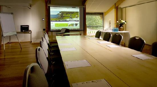 Scandic Partner Nordfjord Hotell & Spa: Modern equipment with big screen, free internet, sound system, good air, good lighting
