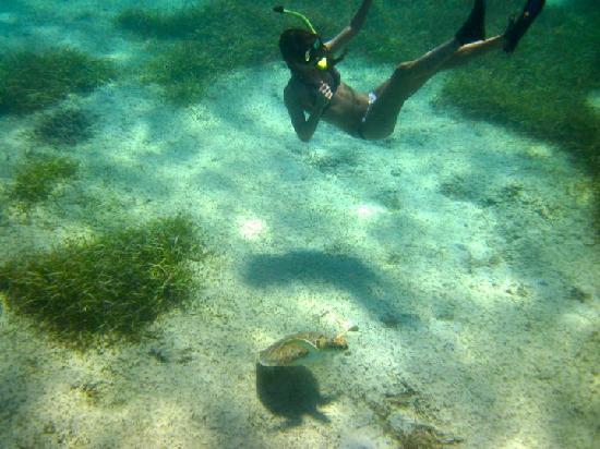 Kayaking Puerto Rico: again