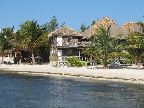 Exotic Caye Beach Resort: This building is whre the two honeymoon suites are.  It has a great view.