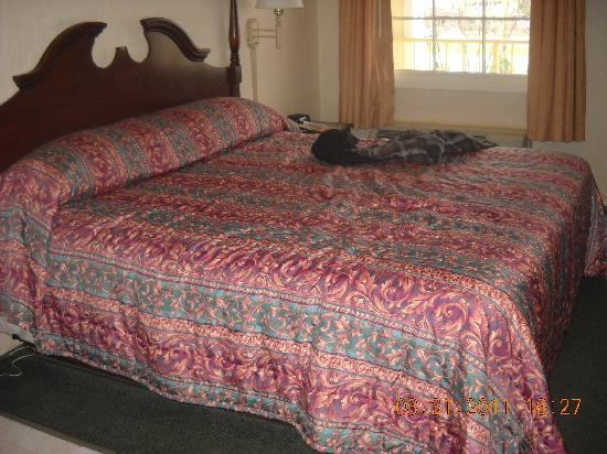 Colonial House Motel: King Size Bed