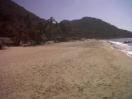 Puerto Vallarta Tours and Concierge : Las Animas beach