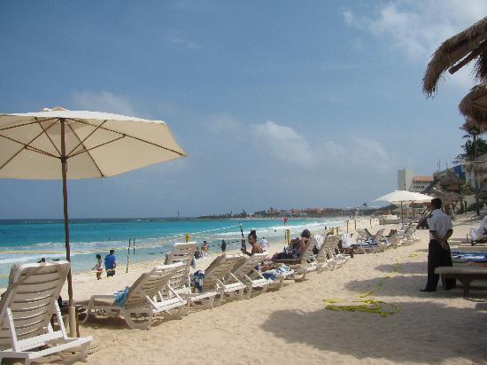Club Regina Cancun: Great walking trails 10km walk thru paradise