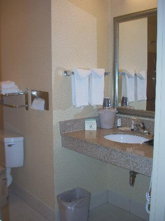 Fairfield Inn & Suites Worcester Auburn: The bath was large and accommodating.