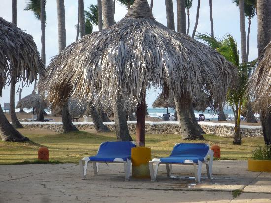 Sirenis Punta Cana Resort Casino & Aquagames: transats au bout de la piscine (le soir)