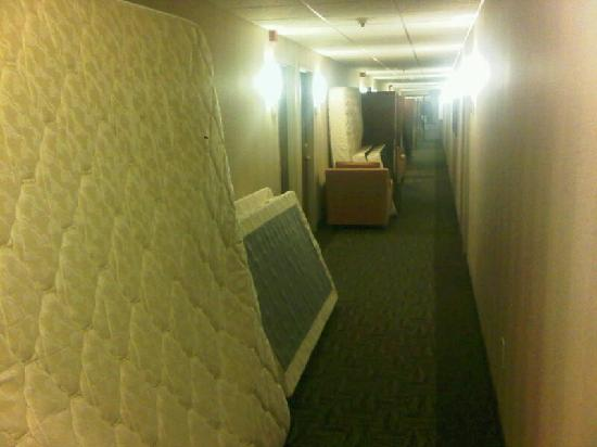 Canandaigua, NY: Hallway