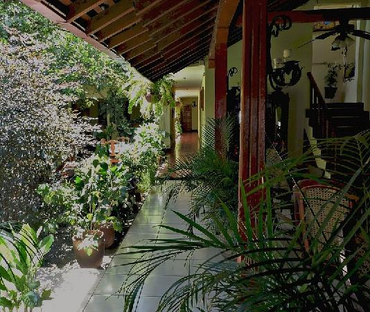 Hotel Real: Interior courtyard & garden