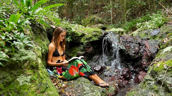 Narrows Escape Rainforest Retreat: Relax by the water