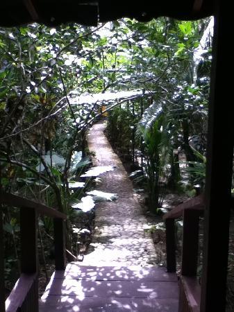 Cabinas Punta Uva: entrance to cabin