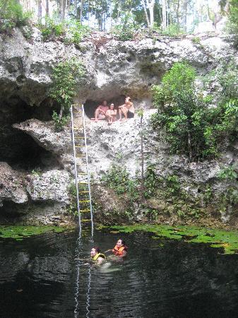 Gorilax Jungle Park Puerto Morelos Mexico Top Tips