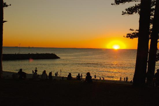 Cottesloe Beach: Lovely setting sun