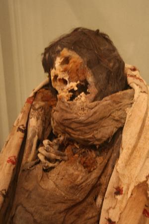 Regional Museum of Ica : die mumien wurden ganz in der Nähe gefunden