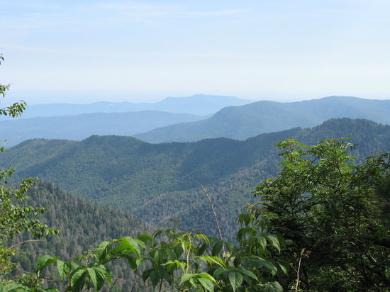 ‪‪Great Smoky Mountains National Park‬, ‪Tennessee‬: View Close to Bunion‬