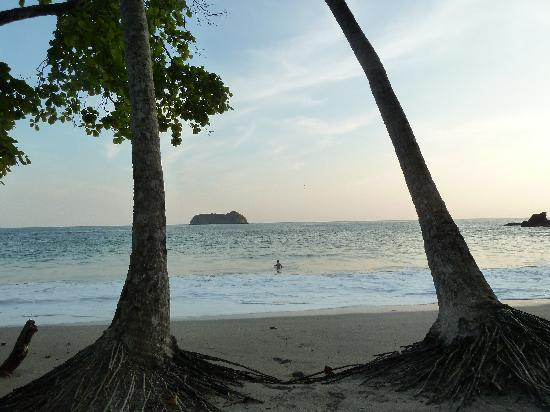 Arenas Del Mar Beachfront Rainforest Resort Private Beach