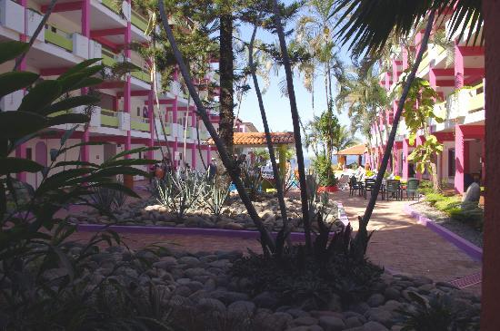 Decameron Los Cocos: Courtyard in Cocos 1