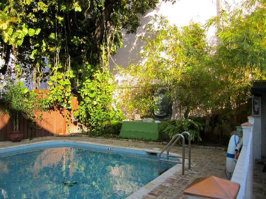 Duval Inn: Pool