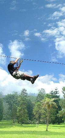 Bedugul, Indonesia: Zipline in the red circuit of Bali Treetop