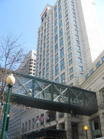 Norfolk Waterside Marriott: Looking up in downtown Norfolk!