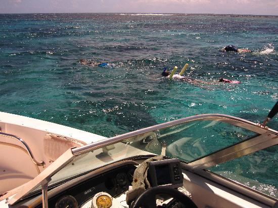 ReefView Apartments: Snorkeling Cades Reef