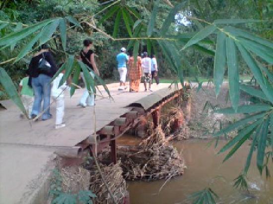 Kinshasa, Repubblica Democratica del Congo: ARC NATUREL DES BONOBOS-CHUTES LUKAYA