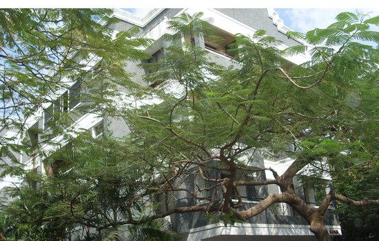 Prashanth Kuteer