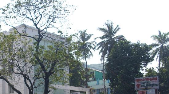 Palmgrove Hotel