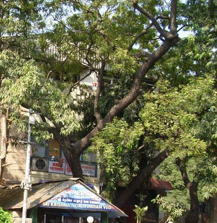 Sree Krishna Hotel