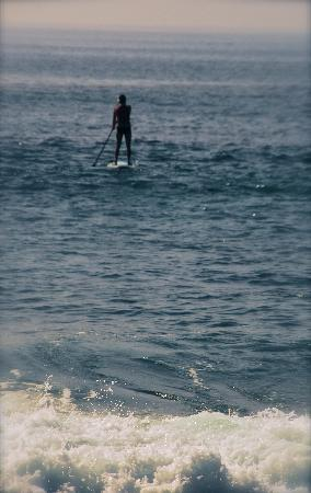 Dana Point, Californien: Stand Up Paddleboarding in Laguna Beach